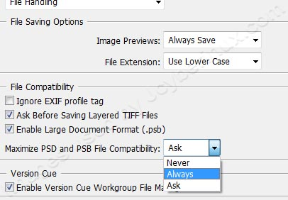 Photoshop file was not saved with a composite image by Jcyberinux