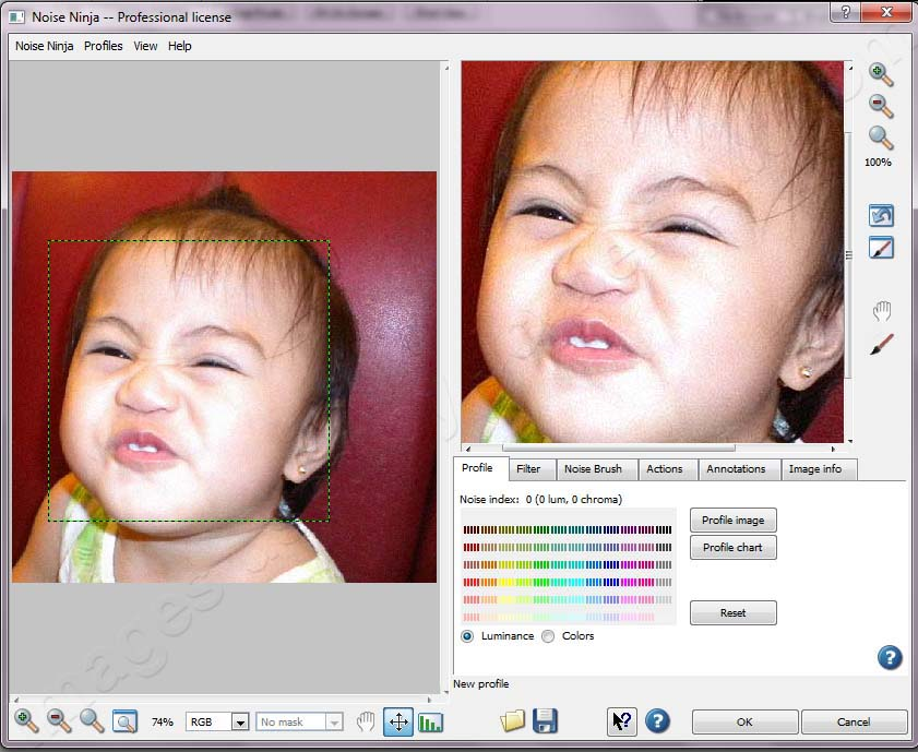 Noise Ninja – Noise Reduction Plug-in for Photoshop