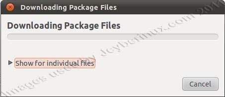 Usage of Synaptic Package Manager on Ubuntu