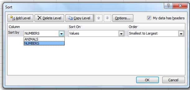 Automatically Fill Numbers on Rows or Columns in MS Excel